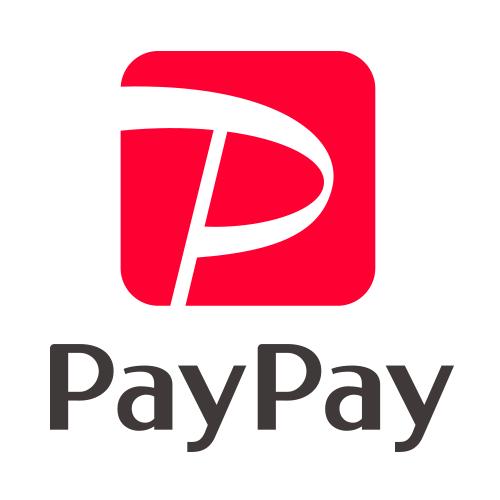 PayPay(Alipay) Available